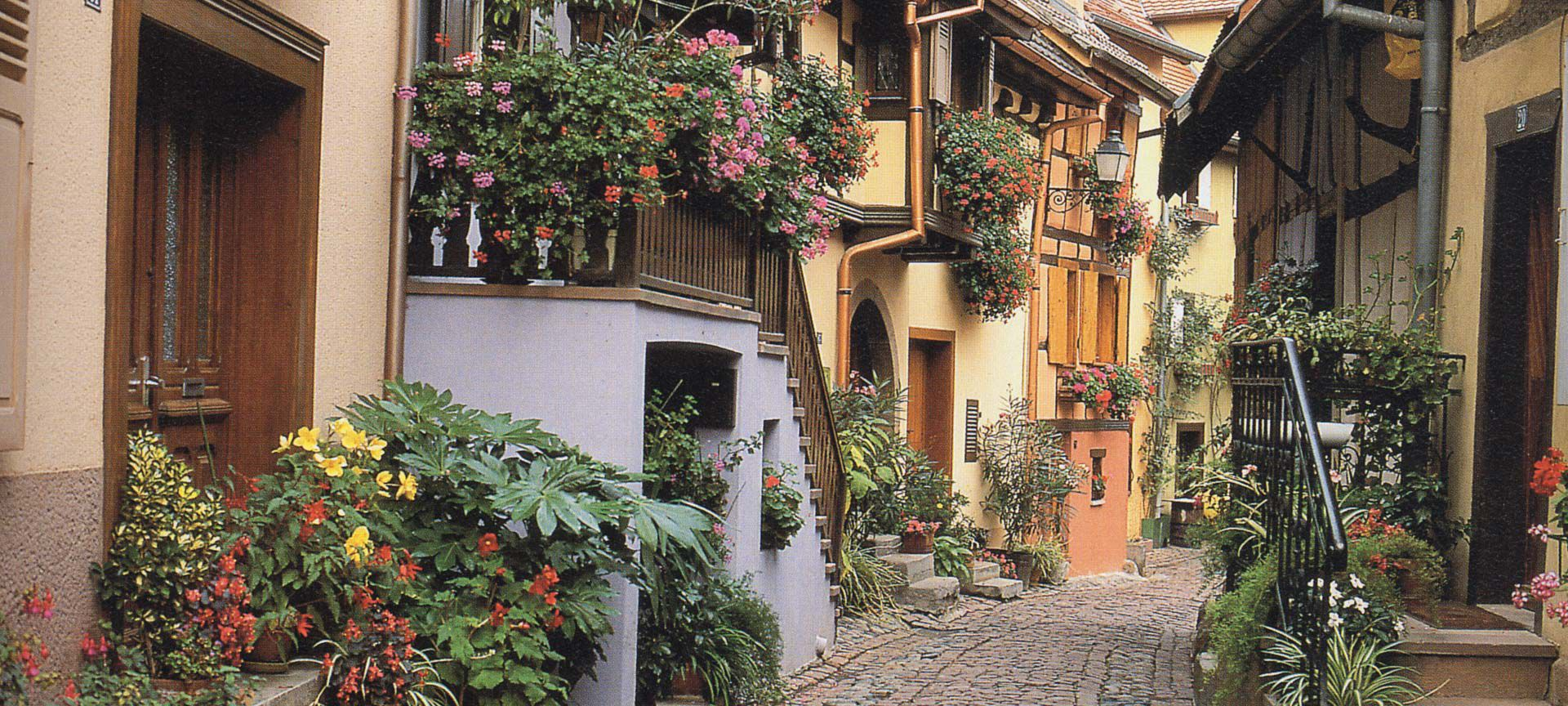 Beatiful pathways of Strasbourg France